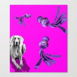 WUBBA WEIMARANER Canvas Print