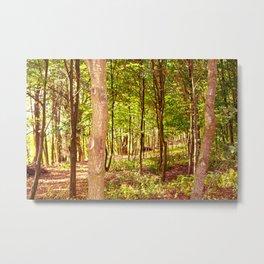 Magicwoods Metal Print