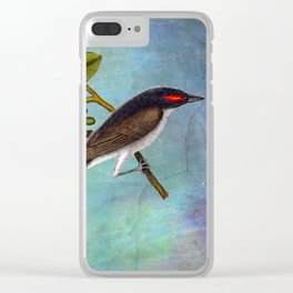 Eastern Kingbird and Sassafrass, Antique Natural History Art Collage Clear iPhone Case