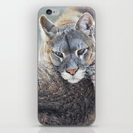 Just Chillin - Cougar Painting by Alan M Hunt iPhone Skin
