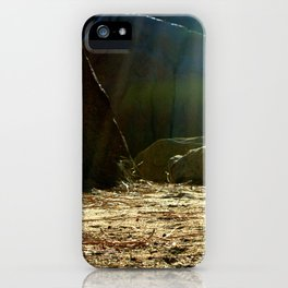 Let's Camp  iPhone Case