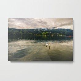 Der See Metal Print