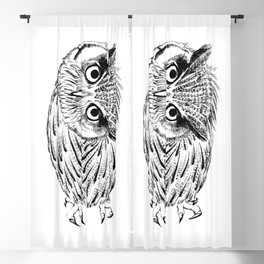 Northern white-faced owl tilted neck Blackout Curtain