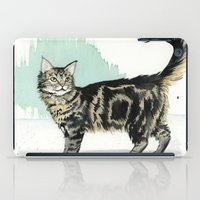 maine iPad Cases featuring Maine Coon by Priscilla George