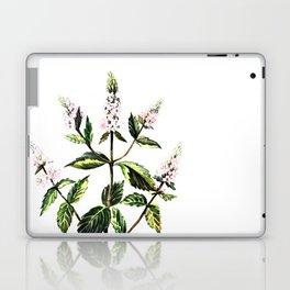 watercolor peppermint Laptop & iPad Skin