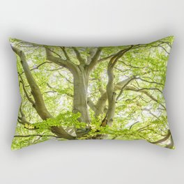 Beech Tree Rectangular Pillow
