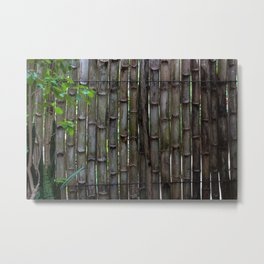 Dreamy Bamboo Metal Print