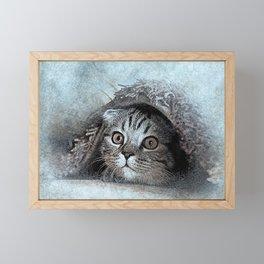 cat animal sweet cats kitten kitty Framed Mini Art Print