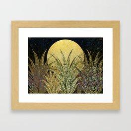 """""""Golden aloe Zebra midnight sun"""" Framed Art Print"""