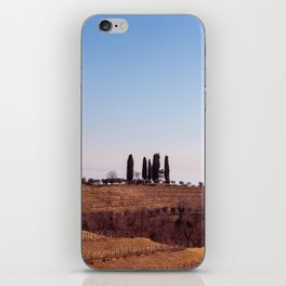 Winter morning in the vineyards of Collio, Italy iPhone Skin