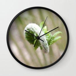 Fiddlehead Abstract Wall Clock