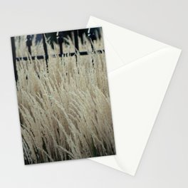 Pampas Grass and Iron Stationery Cards