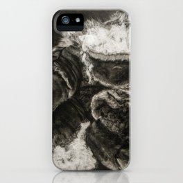 Pulp and Rind iPhone Case