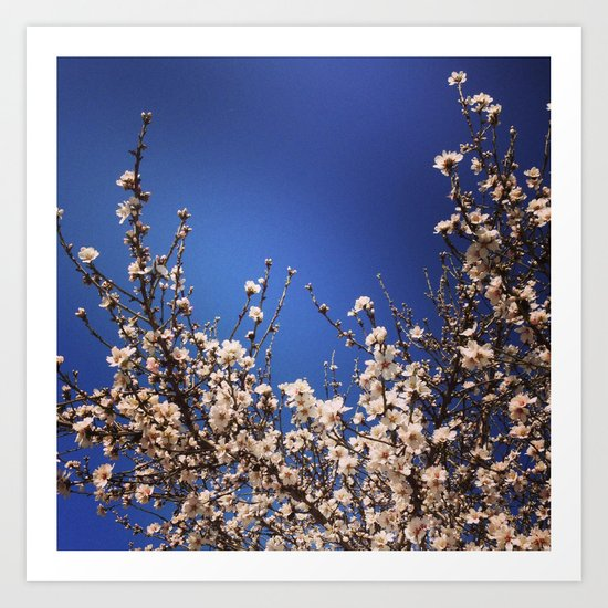 Spring Branches Out Art Print