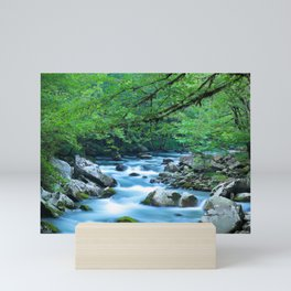 Mountain Stream 1 Mini Art Print