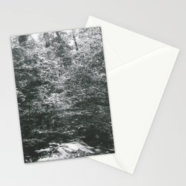 Edge of the Forest Stationery Cards
