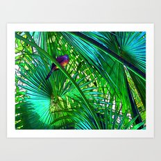 Under The Canopy Art Print