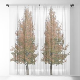 pear tree on white Sheer Curtain
