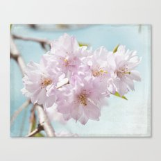 Spring Cherry Canvas Print