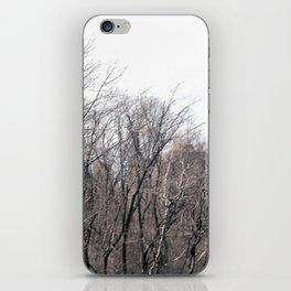 Firelines iPhone Skin