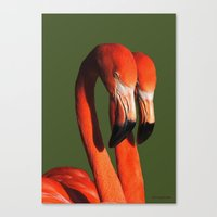 flamingos Canvas Prints featuring Flamingos by DiDi Higginbotham