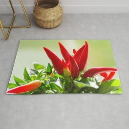 #fresh #Chili #peppers on the #vine for #kitchen #home #decoration Rug