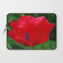 Red oriental poppy flower Laptop Sleeve