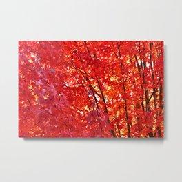 FIERY RED - FALL LEAVES Metal Print