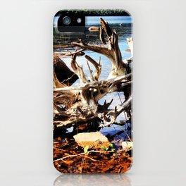 Nature Imitates Art iPhone Case