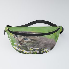 CATICITED Fanny Pack