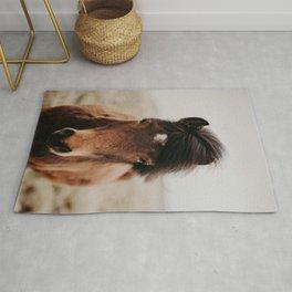 Icelandic Brown Horse Rug