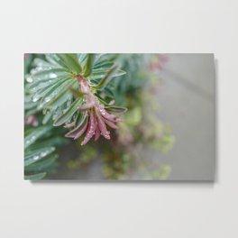 Pastels Floral Greenery Metal Print
