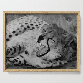 Cheetah fangs Serving Tray