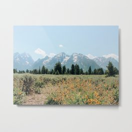 Grand Teton National Park, Jackson Wyoming Metal Print