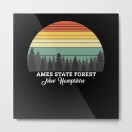 Ames State Forest New Hampshire Metal Print
