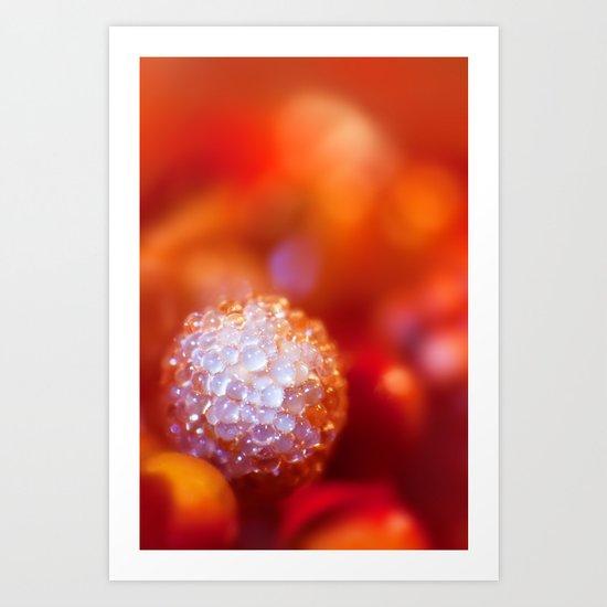 SERIES »MICROPEARLS« I Art Print
