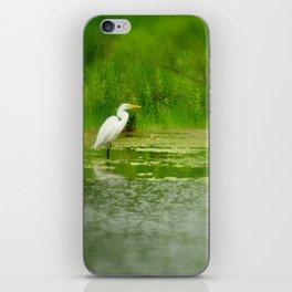 Marsh Egret iPhone Skin