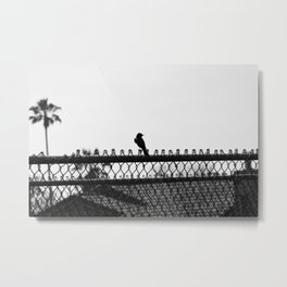 Days Go By Metal Print