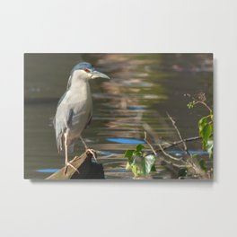 The Red Eye Metal Print