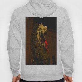 Chicago's Lions in Winter #2 (Chicago Christmas/Holiday Collection) Hoody