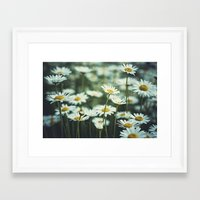 daisies Framed Art Prints featuring daisies by Bonnie Jakobsen-Martin