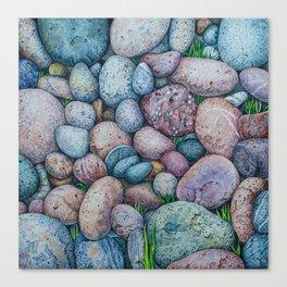 Life of stones Canvas Print