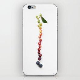 Blueberry Gradient iPhone Skin