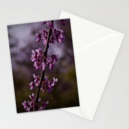 Exhale Into Vision Stationery Cards