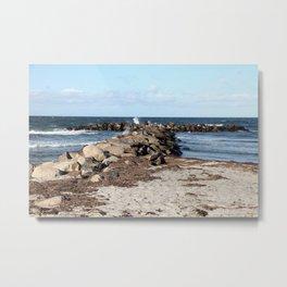 Breakwater at the Baltic beach - Wellenbrecher am Ostseestrand  Metal Print