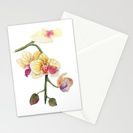 Hand drawn watercolor pretty orchidea Stationery Cards