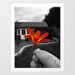 Held Flower Art Print