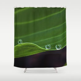five raindrops Shower Curtain