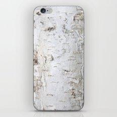 Birch Bark iPhone & iPod Skin