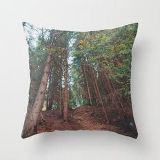 into the woods 05 Throw Pillow